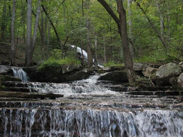 Beautiful Collins Creek - Heber Springs