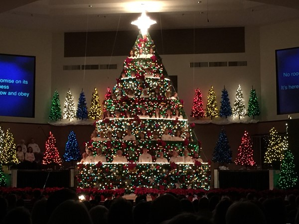 We think the Living Christmas Tree presentation at Walnut Street Baptist Church is world class
