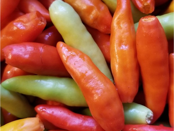 Pepper Sauce to be