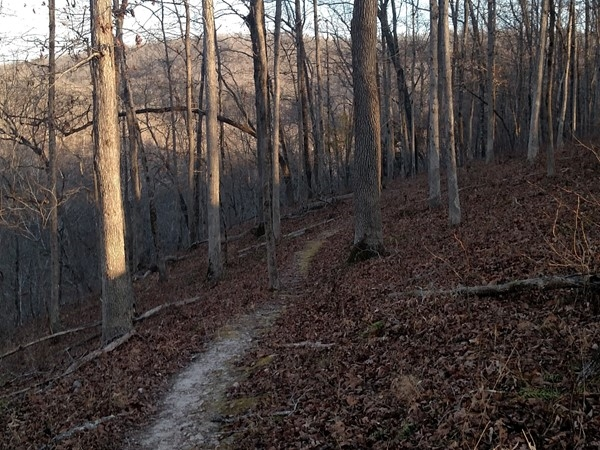 Pruitt - Winter hikes offer a normally unseen landscape during peek foliage seasons