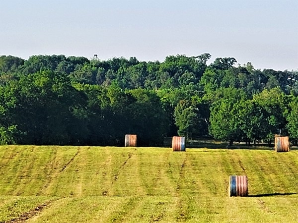 Patriotic hay rolls make an awesome statement during these unprecedented times