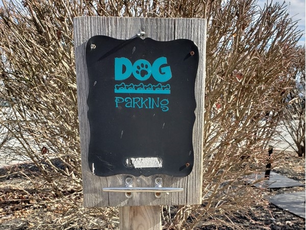 So happy to live in a dog friendly community! Park your dog while you enjoy lunch or shopping