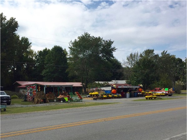 Fruit and plant road side market on the highway between Searcy and Bald Knob