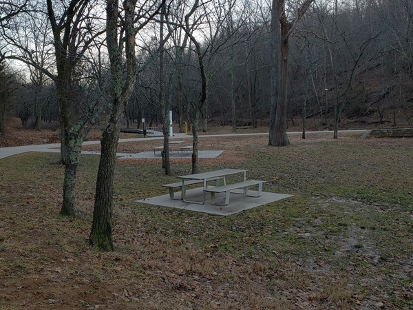 Park picnic area at Lake Atalanta