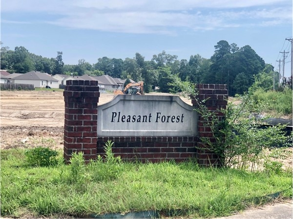 Entrance to Pleasant Forest Subdivision in Benton