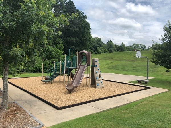 Community playground in Coldwater Creek Subdivision in Benton